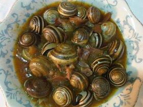 Recetas caseras : Caracoles con salsa de tomate y jam�n